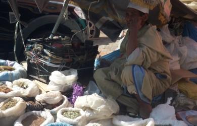 5+1 cose da non perdere a Marrakech