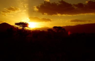 Il Kenya e il mal d'Africa