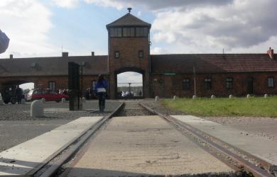 Visita ad Auschwitz e Birkenau