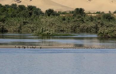 Crociera sul Nilo: dove, come e quando