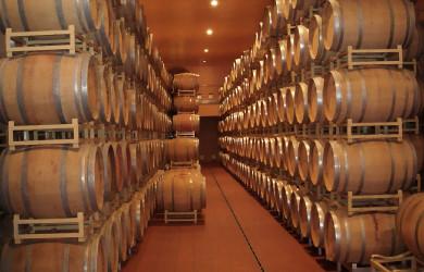 Enoturismo, in Umbria lungo la strada dei vini